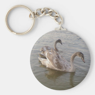 Young Swans Lake Keychain