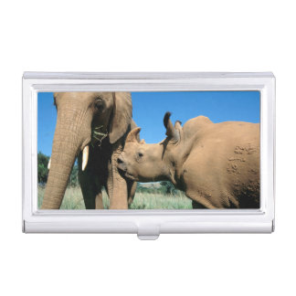 Young White Rhinoceros Business Card Holders