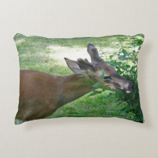 Young White Tailed Deer Buck Pillow