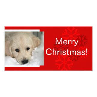 Your Dog Photo Snowflake Christmas Card Photo Card Template
