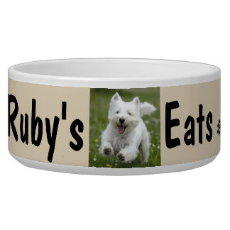 Your Dog's Photo & Name Personalize
