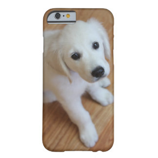 your favorite pet photo on an iPhone 6 case Barely There iPhone 6 Case