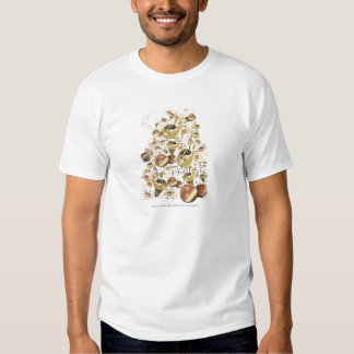 Your gold song 2 u tshirts