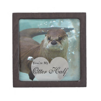 Your my Otter Half Brown River Otter Swimming Premium Trinket Box