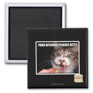 Your Offering Pleases Kitty Magnet