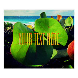 Your Own Text Over A Tropical View Poster