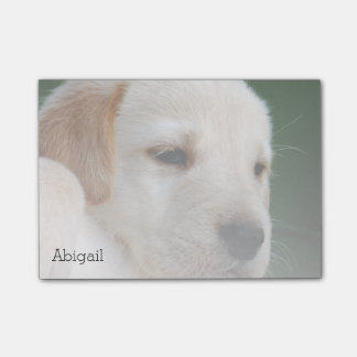 Your Photo Automatically Gradually Fades Post-it Notes