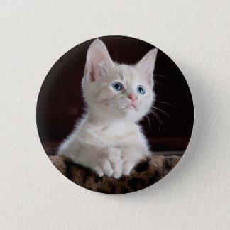 Your Photo Custom Button