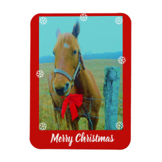 your photo here or Horse and Red Christmas Bow Magnet