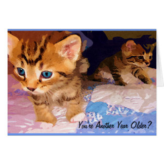 You're Another Year Older Kitten Birthday Card