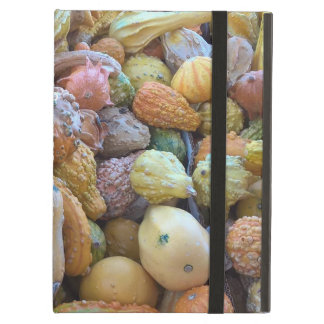 """You're """"Gourd-geous""""! Case For iPad Air"""