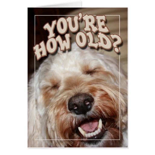 You're How Old? Greeting Cards