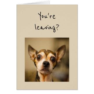 You're Leaving? Noooo! Fun Chihuahua Dog Card