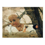 You're Never Too Old To Play With Dolls! Postcard
