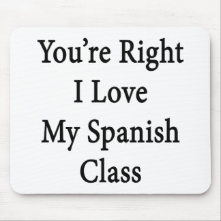 You're Right I Love My Spanish Class Mouse Pad