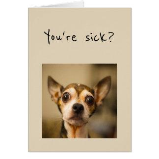 You're Sick? Noooo Get Well Soon Fun Chihuahua Dog Card