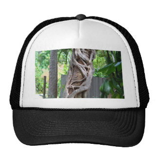 You're So Twisted Trucker Hat