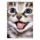 You're The Cats Meow! Funny Cat Card