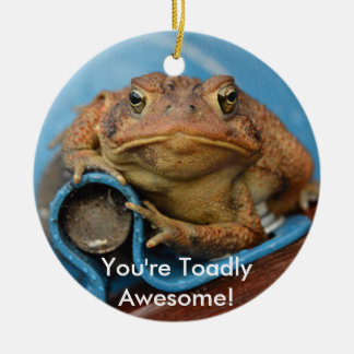 You're Toadly Awesome! Round Ceramic Ornament