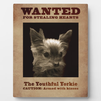 Youthful Yorkie_ Plaque
