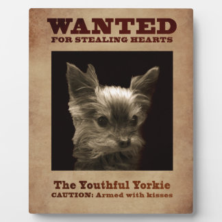 Youthful Yorkie Wanted Plaque