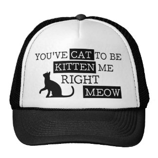 You've cat to be kitten meow funny trucker hat