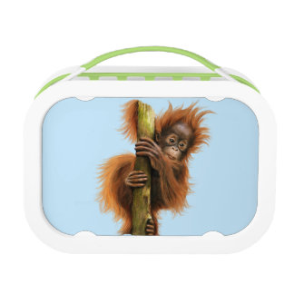 Yubo Lunchbox,  Orangutan Lunch Box