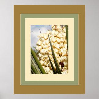 Yucca Blossoms - Sonoran Desert Plants Artprint Poster
