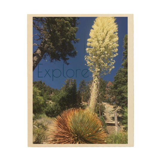 Yucca Explore wooden poster