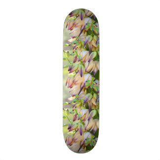 yucca flowers skateboard