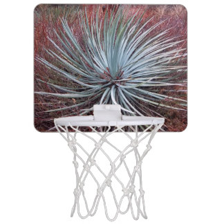 Yucca in the Desert Mini Basketball Hoop