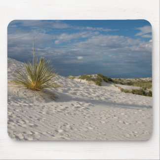Yucca Plant at White Sands National Monument Mouse Pad