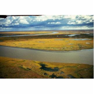 Yukon Delta Fall Tundra Photo Sculpture