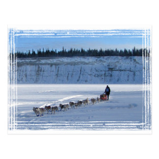 Yukon Quest Team Postcards