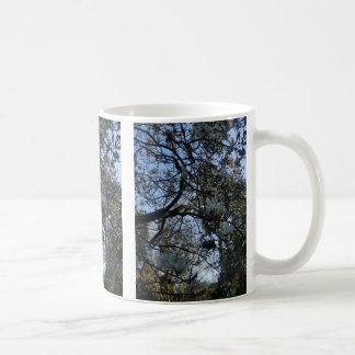Yulan Magnolia #2 Mug