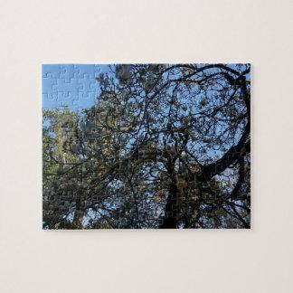 Yulan Magnolia #3 Jigsaw Puzzle
