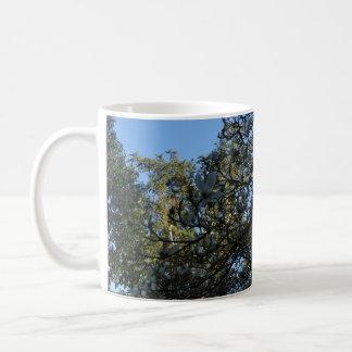 Yulan Magnolia #3 Mug