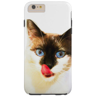 Yum Kitty Phone case