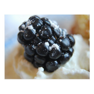 Yummy Blackberry Postcard