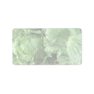 Yummy Iceberg lettuce