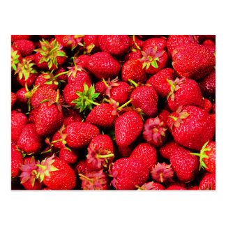Yummy Strawberries Postcard