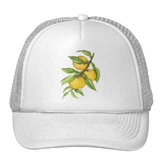 Yuzu Collection Trucker Hat