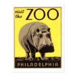 Z00 - Hippo Post Cards
