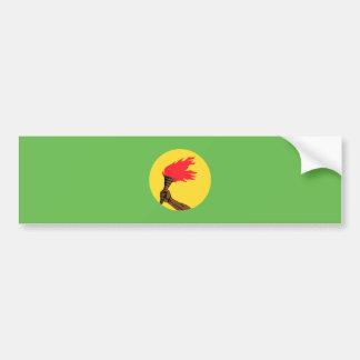 Zaire Flag Bumper Sticker