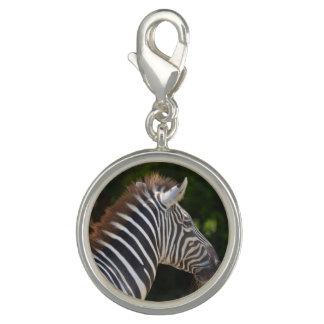 Zealous Zebra Photo Charms