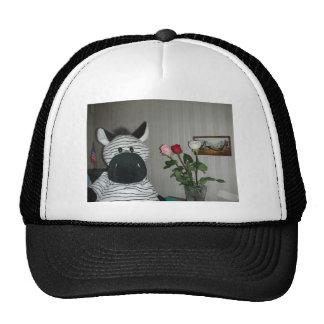 Zebra 2 hat