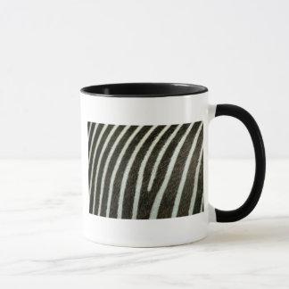 Zebra 2 mug