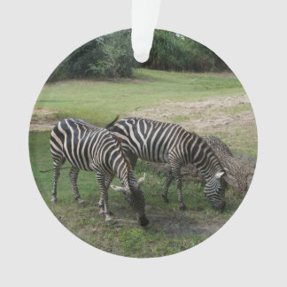 Zebra #2 Ornament