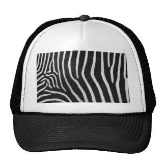 zebra-9 hat