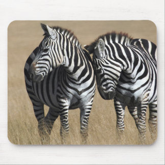 """Zebra Affection"" Mouse Pad"
